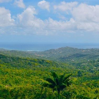 Highland – The Best View In Barbados