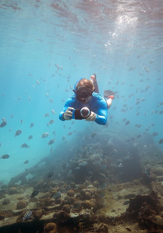 Mergulhando no oceano azul