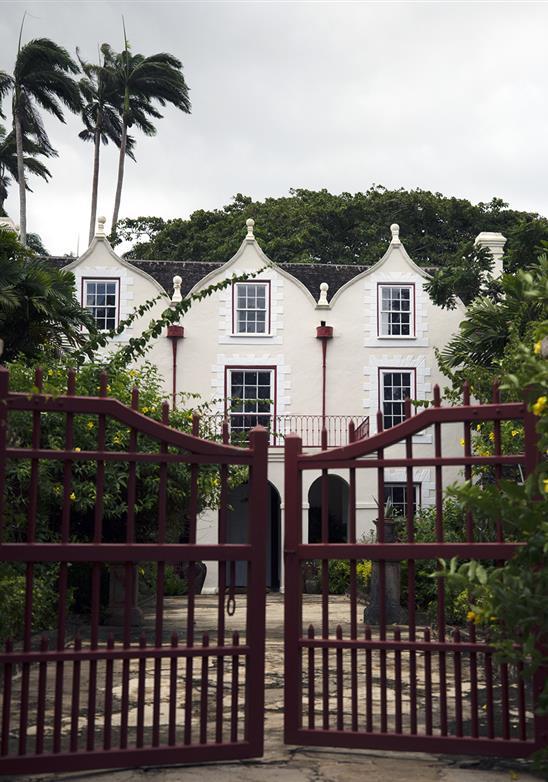 Abadía de San Nicolás: una histórica plantación de caña de azúcar