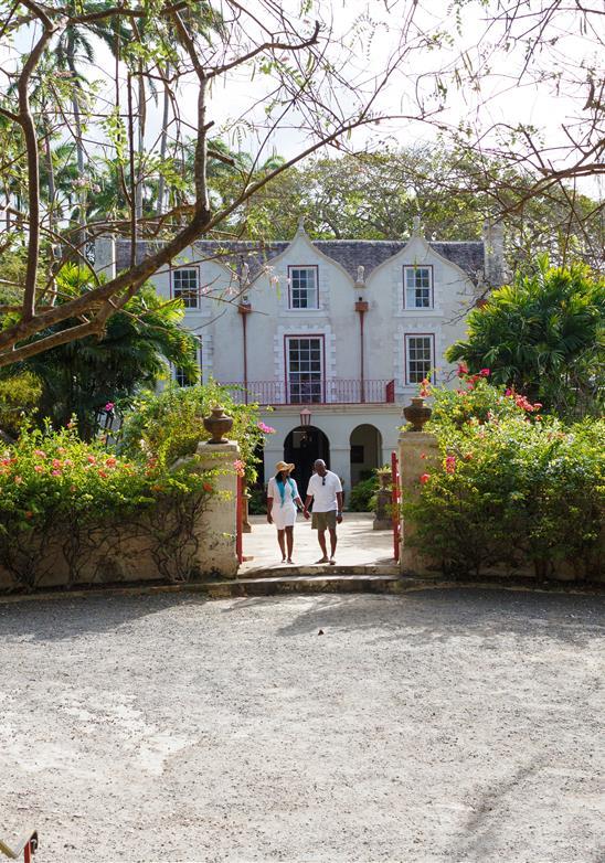 La historia del ron comienza en Barbados: el lugar de nacimiento del ron