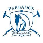 Polo Season 2019 - Apes Hill Polo Club Mixed Ladies Tournament