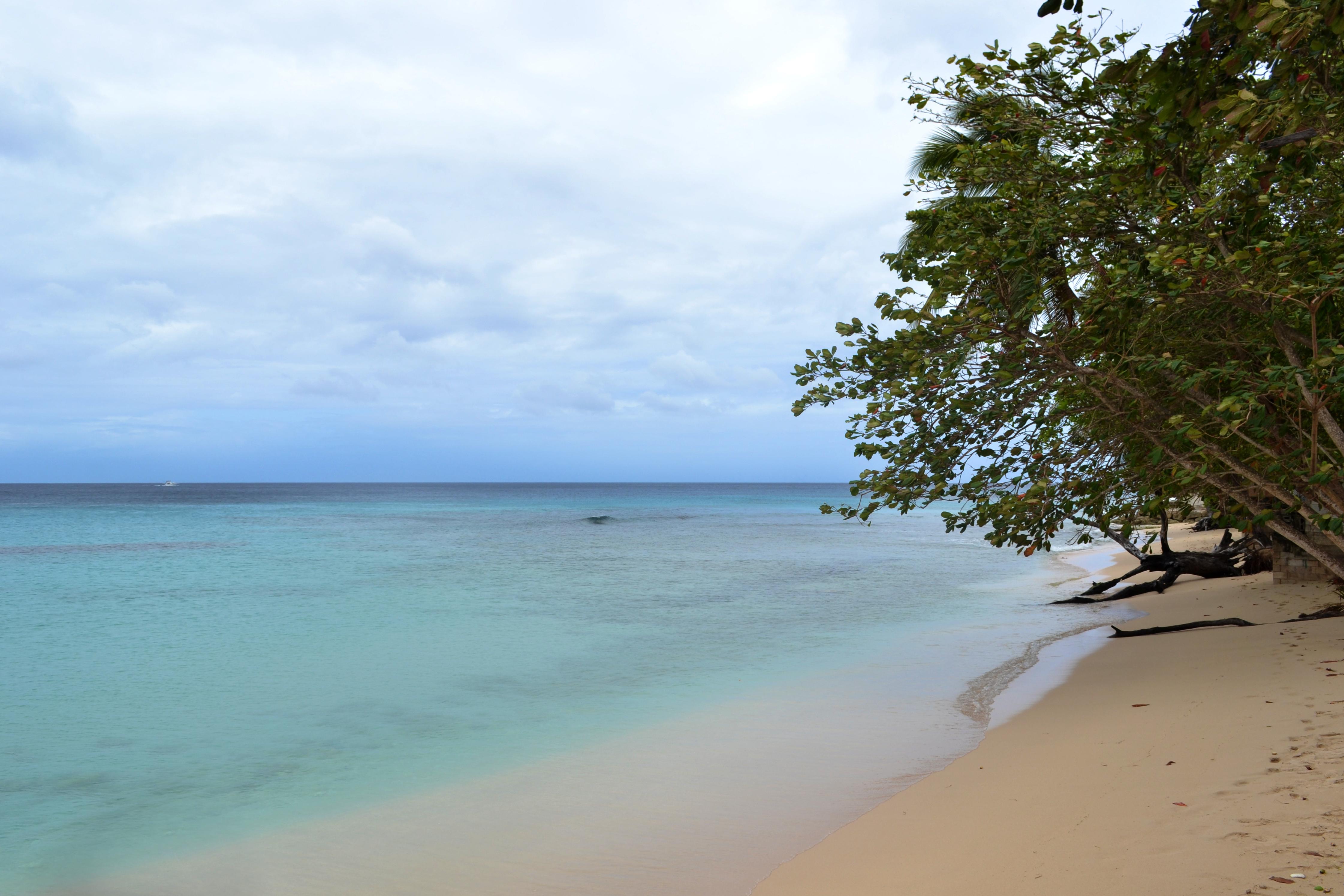 Playa Gibbs