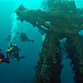 Dive Fest Barbados
